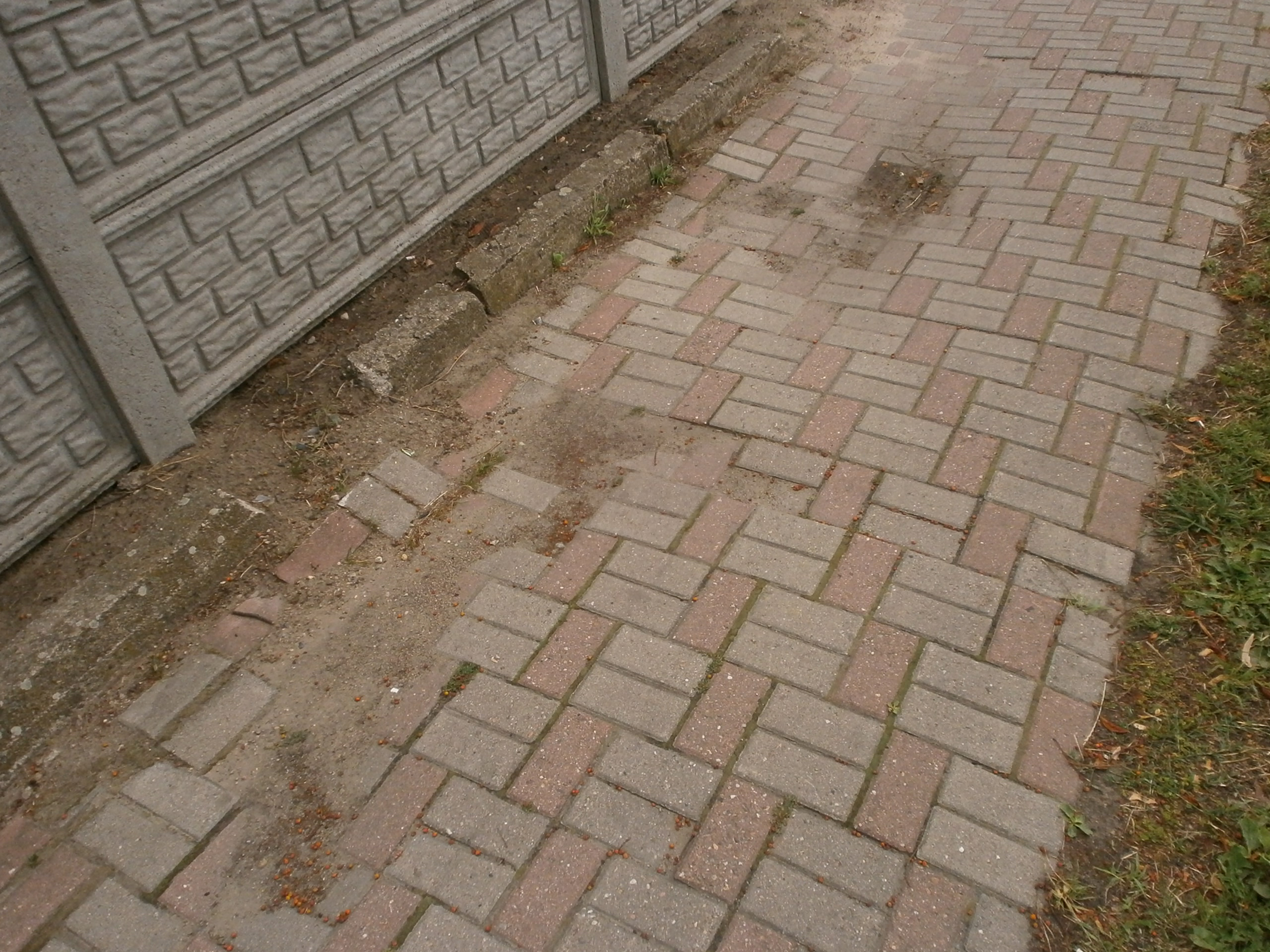 Krzywy chodnik